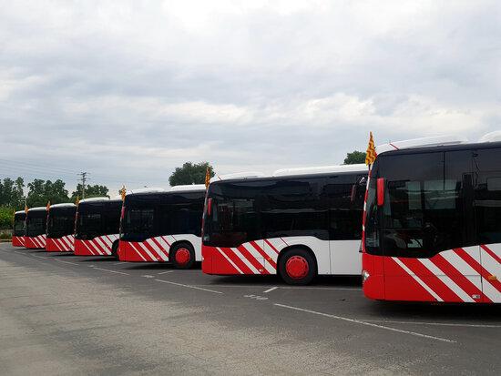 Pla general d'alguns dels autobusos de la flota de l'EMT de Tarragona. Foto: ACN.